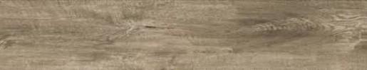 Dom Logwood dlažba 16,4x99,8 grey